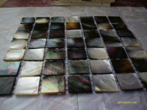 Mother of Pearl Shell Mosaic (SP-01) pictures & photos