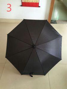 1 The Umbrella Keep out Rain