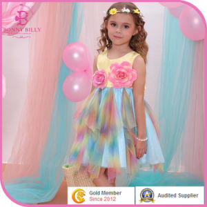 Wholesale Baby Girl Flower Dress, Fashion Design Children Clothing
