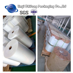 Factory Vacuum Packaging Film PE Film Manufacturer in China pictures & photos