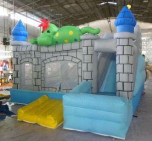 2015 New Inflatable Castle for Amusement Park pictures & photos