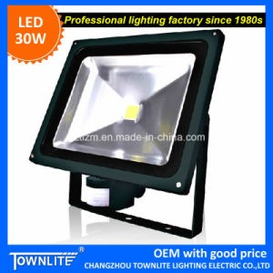 """Townlite""Waterproof Floodlight Epistar LED30W Floodligh"