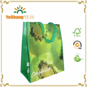Non Woven Foldable Bag/Reusable Vinyl Tote Shopping Bag/Lamination PP Woven Shopping Bag pictures & photos