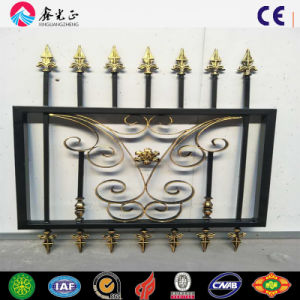 Customized Models Designs of House Fence Gates pictures & photos