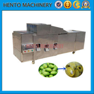 Expert Supplier of Fruits Cherry / Dates / Olive Pitting Machine pictures & photos