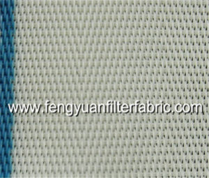 Paper Industry Polyester Sludge Dewatering Mesh Belt pictures & photos