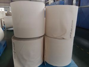 Aramid Air Filter Fabric Aaramid Dust Filter Fabric pictures & photos