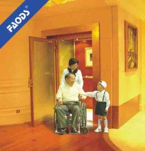 Residential Elevator/Lift (NR20)