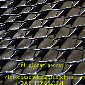 Geocomposite Drainage Net pictures & photos