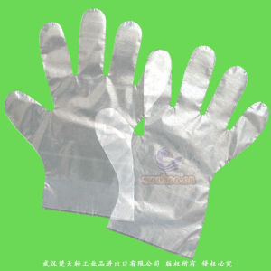 Disposable Smooth PE Gloves pictures & photos
