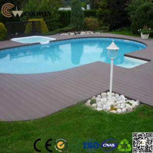 Terrace Garden Exterior WPC Decking Outdoor pictures & photos