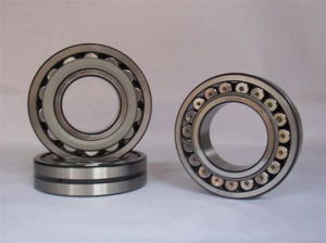 China Wholesale FAG Chrome Steel Nj2236 Tapered Roller Bearing pictures & photos