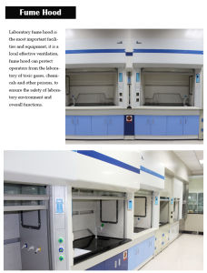 Chemical Resistance Stainless Steel Laboratory Fume Hood pictures & photos