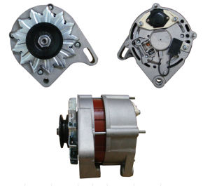 12V 55A Alternator for Seat Lester 20760 A13e19 pictures & photos