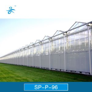 Sp-P-96 Venlo Multi-Span PC Board Agricultural Greenhouse