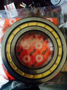China Bearing Company Brass Cage Timken Nj220 Cylindrical Roller Bearing pictures & photos
