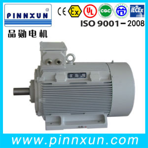 Y2 Series Cast Iron 11kw Electric Motor pictures & photos