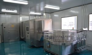 Sterilizer 100grades Purified Drying Oven Hot Air Ciculation Oven pictures & photos