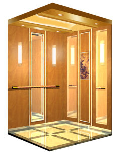 Passenger Elevator with High Quality pictures & photos