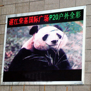 P20mm Electronic LED Display Screen