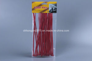 2015 10*1020mm Good Quality Nylon Cable Tie pictures & photos