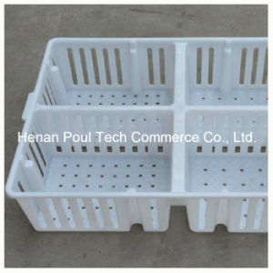 Poultry Farm Equipment Layer Chicken Cage pictures & photos