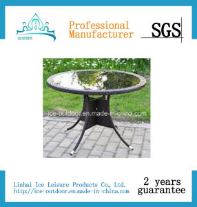Outdoor Furniture Garden Furniture Foldable Rattan Dining Table (FD-T-027I)