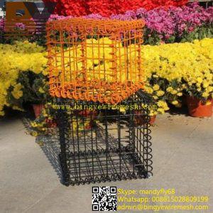 Decorative Garden Wall Welded Gabion Box pictures & photos