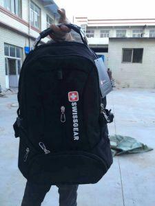 Fashion Sport Backpack&Laptop Backpack, School Backpack