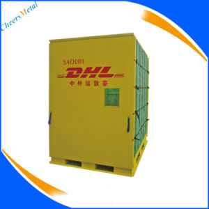 DHL Express Aircraft Aviation Land Transportation Container pictures & photos