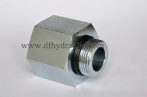 SAE Standard Adjustable and O-Ring Fittings pictures & photos