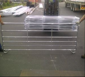 5FT*12FT Galvanized Steel Cattle Panel/Horse Panel pictures & photos
