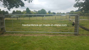 Livestock Fencing Galvanized Rural Steel Farm Gate pictures & photos