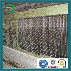 Supply Hot Dipped Galvanized Gabion Mesh Directly by Factory pictures & photos