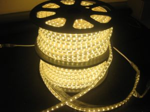 SMD2835 60LEDs Per Meter LED Strip Light Warm White pictures & photos