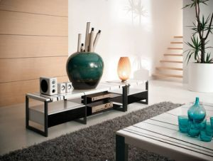 Modern Home Furniture Marble TV Stand TV Cabinet (WLF-TV024)