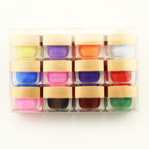 Nail Art Beauty Solid UV Builder Gel Polish Kit (UG01) pictures & photos