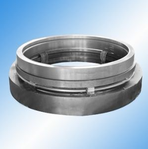 Marine Flanges (f008) pictures & photos