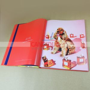 Book Printing Hardcover Photography Book pictures & photos