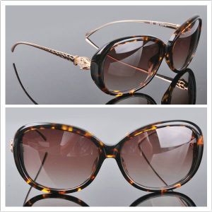 Women Style /2013 New Sunglasses /Fashion Sunglasses pictures & photos