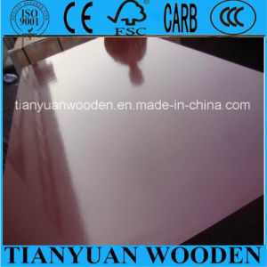Film Faced Plywood Manufacturer; Shuttering Plywood for Building Construction pictures & photos