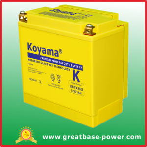 Hing Superior Motor Battery 21ah 12V pictures & photos