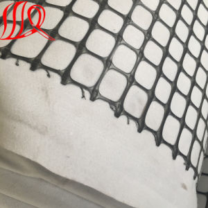 Black Biaxial PP Plastic Geogrid pictures & photos