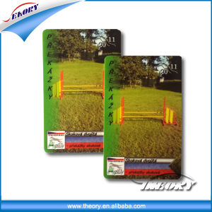 High Quality Hologram PVC Card pictures & photos