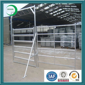 Galvanized Cattle Yards (Factory) pictures & photos