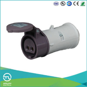 Utl Uz694 20-25V Low Voltage Plug Waterproof Industrial Connector IP44 pictures & photos