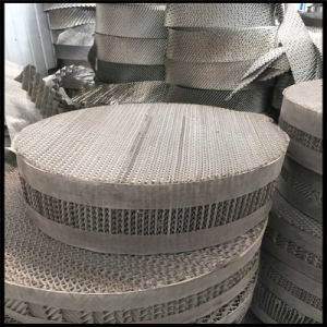 Stainless Steel Woven Wire Mesh Vessel Internals/Tower Packing/Structured Packing pictures & photos