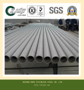 Small Stainless Steel Seamless Pipe pictures & photos