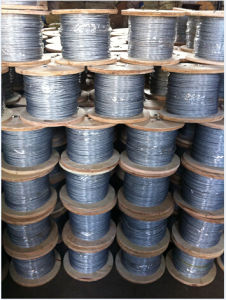Galvanized Steel Wire Rope 6X7/ 7X7/6X19/6X37 for Transport Usage pictures & photos