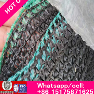 Rich Safety Nets, HDPE Nettings pictures & photos